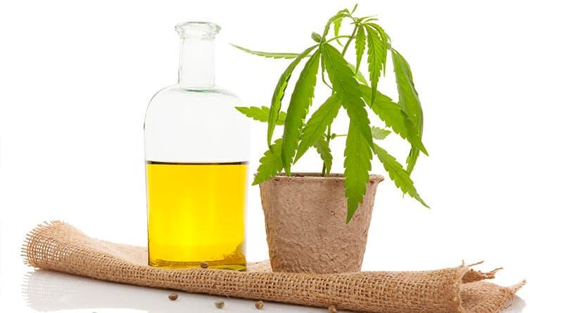 Kannabisöljy